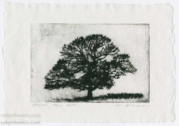 Shade Tree by Mark Kadota (Hawaiian Print)