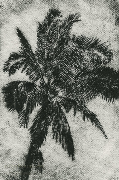 Palm by Mark Kadota (Hawaiian Print)